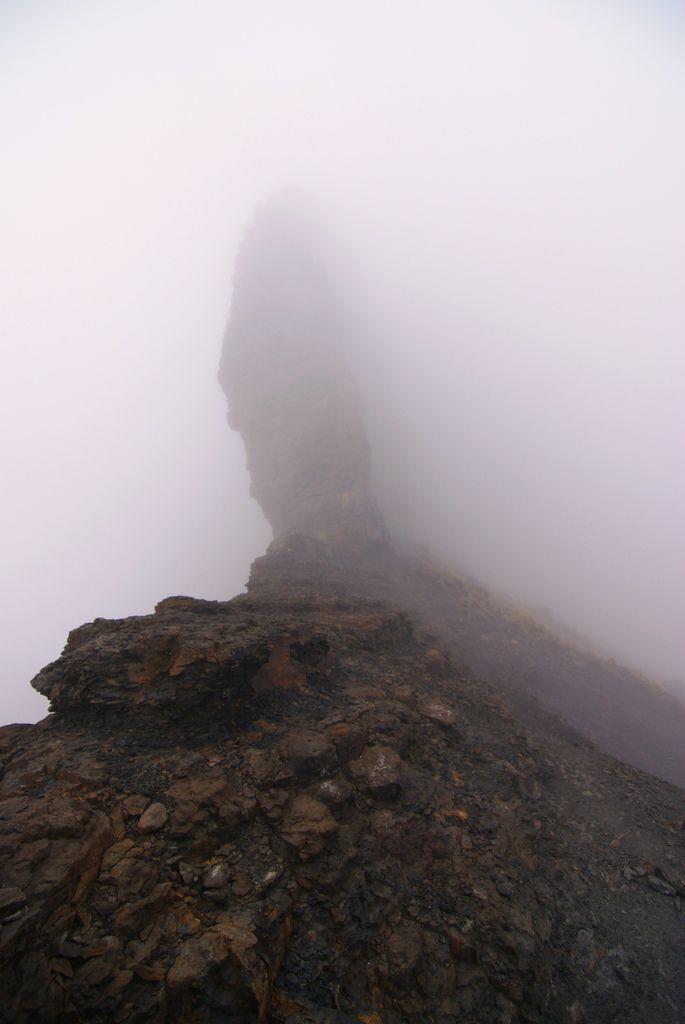 大霸尖山~在霧裡只露出一角