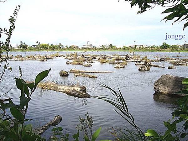 羅東貯木池