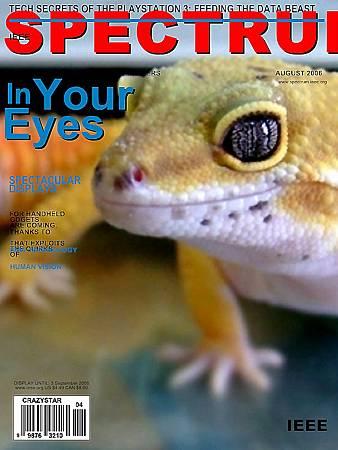 波波雜誌封面1