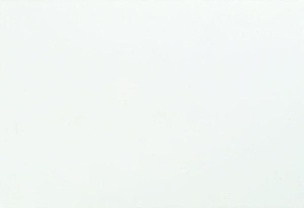 新雅-白牆磚 28x41CM.jpg