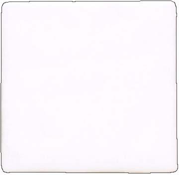 1508.jpg