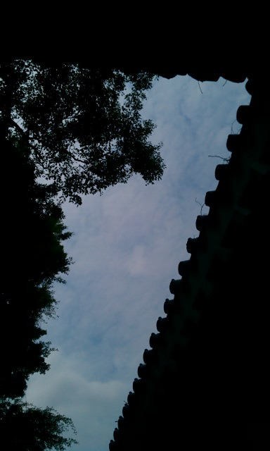 IMAG0446.jpg