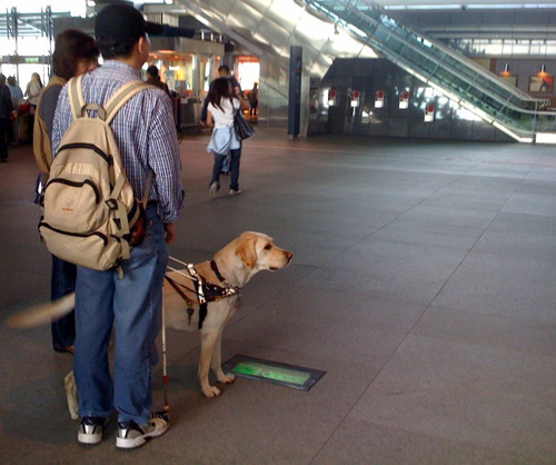 dog-1s.jpg