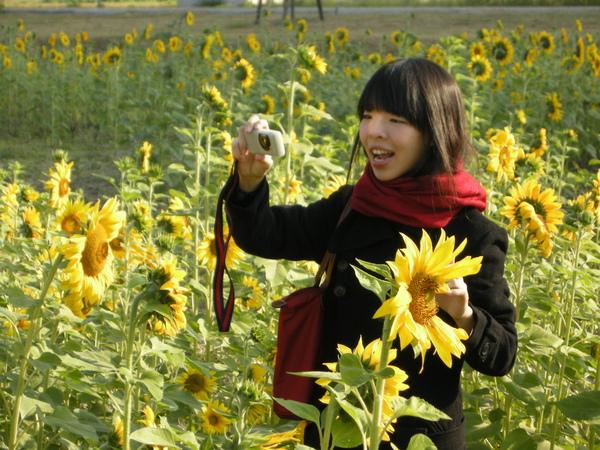 花田中的女孩