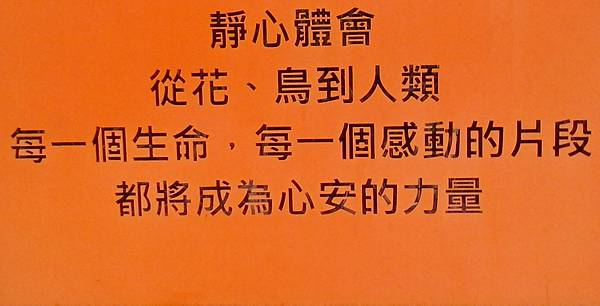 IMG_20151130_160905.JPG