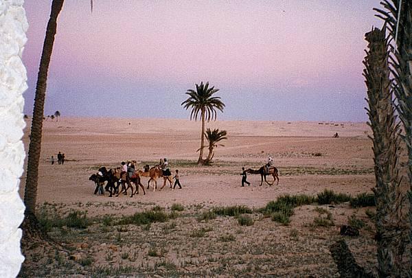 5.撒哈拉的黃昏.jpg