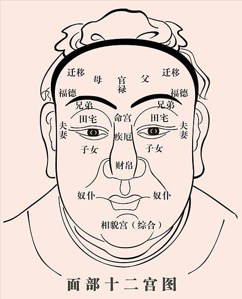 面相學.jpg