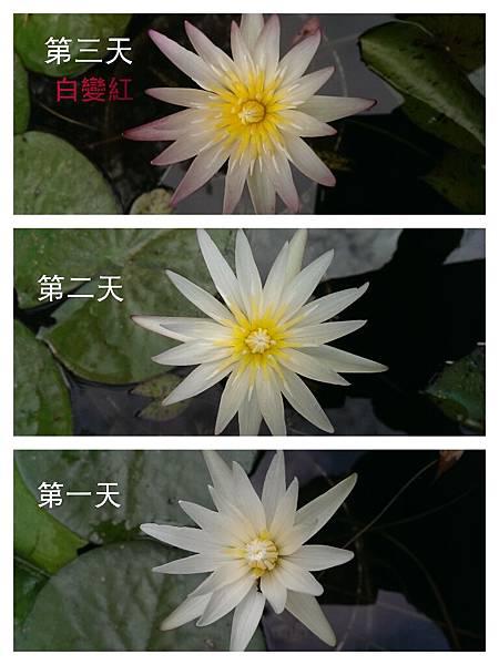 CYMERA_20141212_132103.jpg