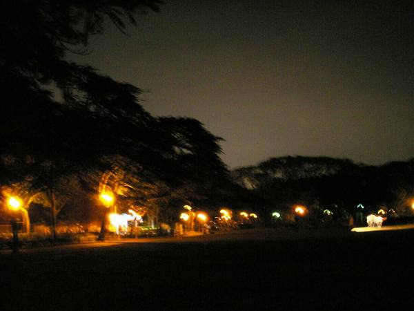 夜視拍攝教堂旁邊的夜景