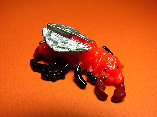 Fire Beetle