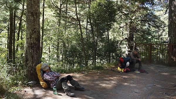 710林道6.8K登山口