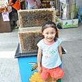 後方是蜜蜂~