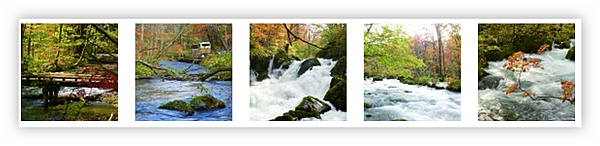 Ashampoo_Snap_2012.05.09_09h52m26s_001_