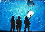 Ashampoo_Snap_2012.09.03_14h07m23s_004_
