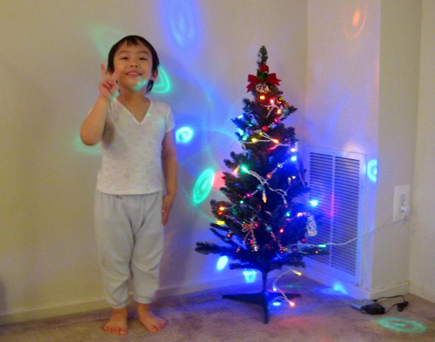 小涼的第一棵聖誕樹