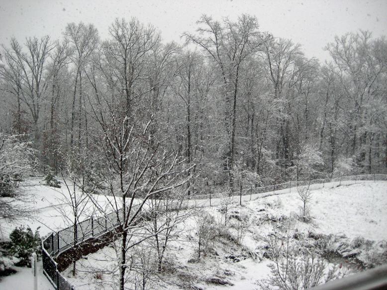 20091205-first snow07s.jpg