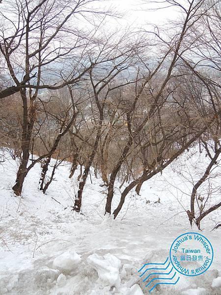 南山公園-006 [1600x1200].JPG