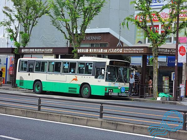 春日大社.JPG