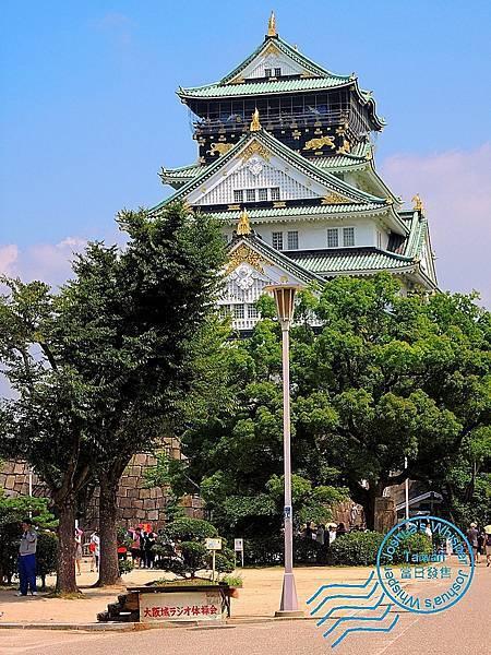 2017大阪城 (9).JPG