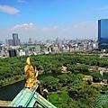 2017大阪城 (12).JPG