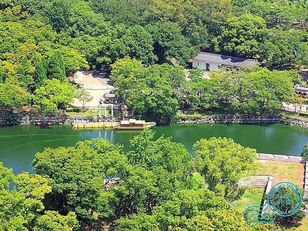 2017大阪城 (13).JPG