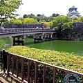 2017大阪城 (15).JPG