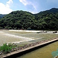 京都嵐山 (5).jpg