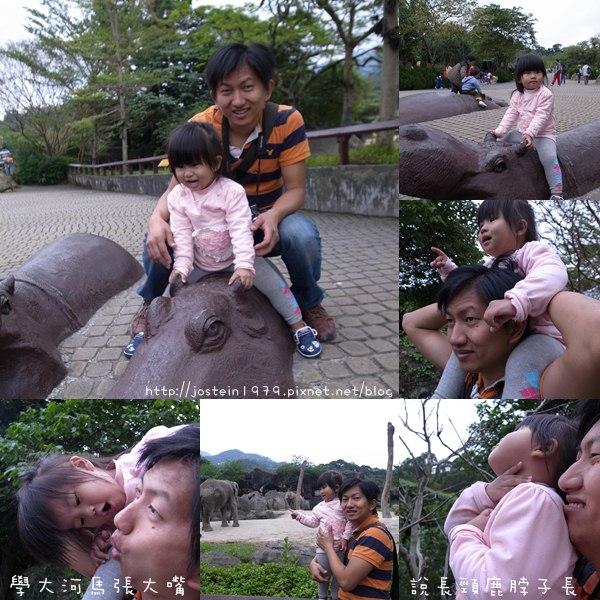 20101103-6.jpg