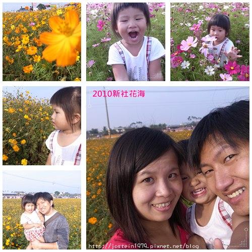 20101111-7.jpg