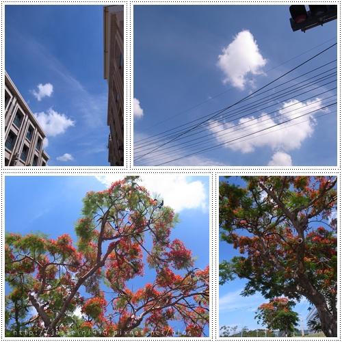 20110606-1.jpg