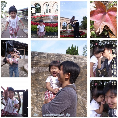 20101111-5.jpg