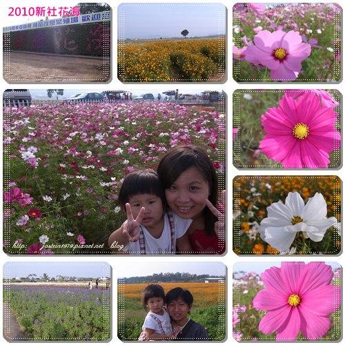 20101111-6.jpg