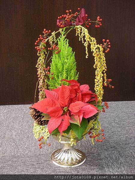 聖誕小盆栽