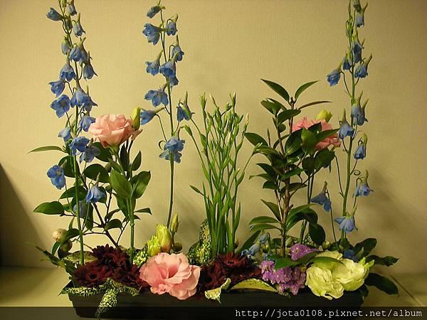 直立平行-春天花園