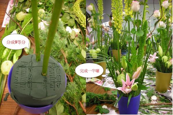 盆花.jpg