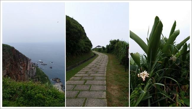 龍洞灣岬步道3.jpg