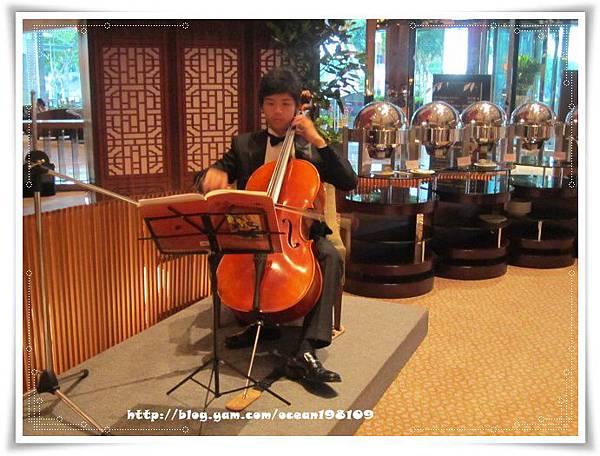 提琴.jpg