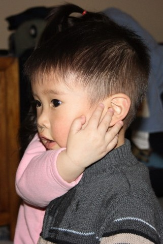 Taylor ear 2.jpg