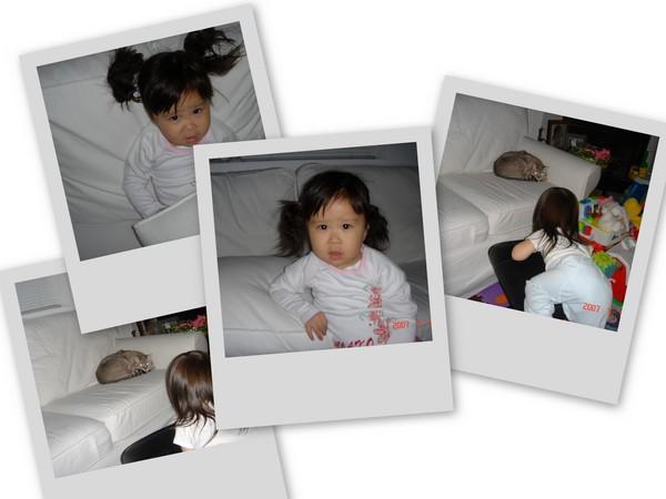 collage0510.jpg
