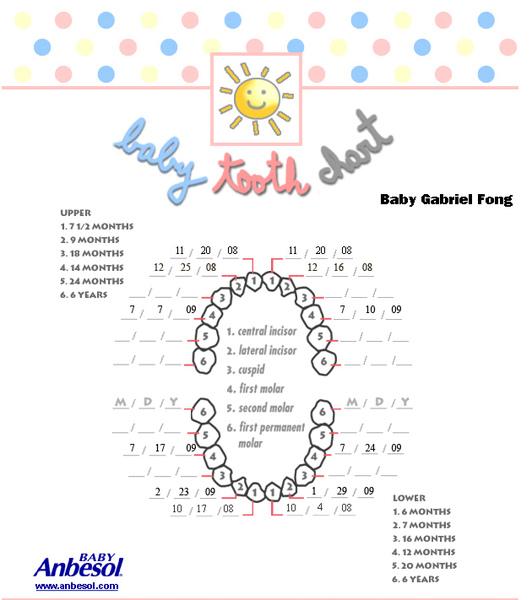 Tooth Chart.jpg