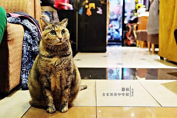 中山站美食咖啡廳-貓妝自家烘焙咖啡館