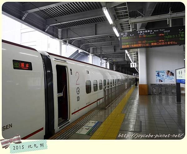 P1250239.jpg