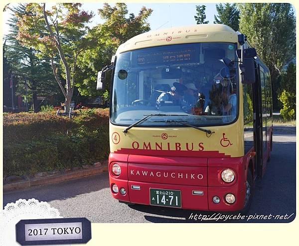 P1340761.jpg