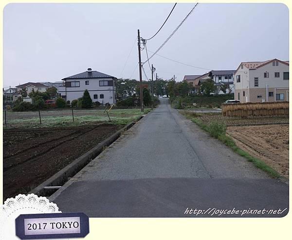 P1340850.jpg