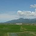 綠油油一片 加上遠山與雲的相伴