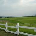 牧場外的放牧區