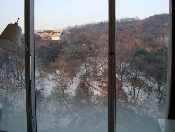 窗外雪景.jpg