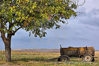alone-wagon-6648570