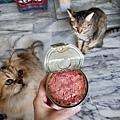 德國Clauder's-鴨肉_180820_0014.jpg