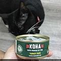 KOHA無穀主食罐-96%火雞肉_180827_0015.jpg